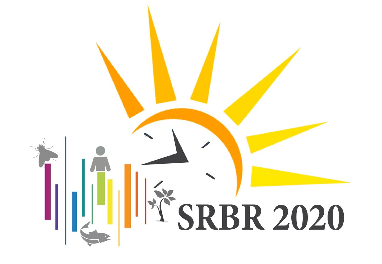 Logo Competition Srbr Society For Research On Biological Rhythms